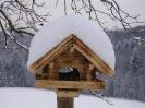 Wintereindrücke_15