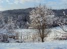 Wintereindrücke_5