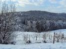 Wintereindrücke_7